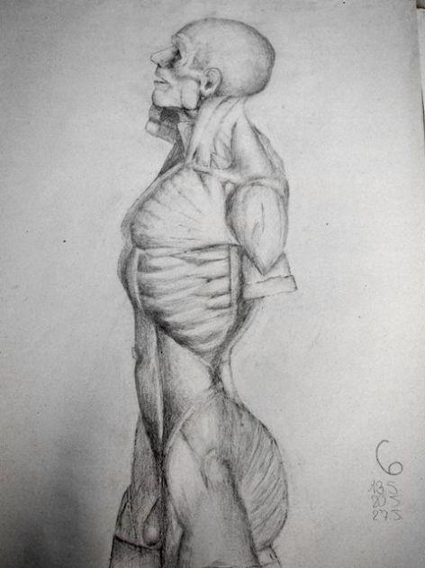 fotografie Výběr klauzurních prací 2.r 2013-2014:Figurální kreslení